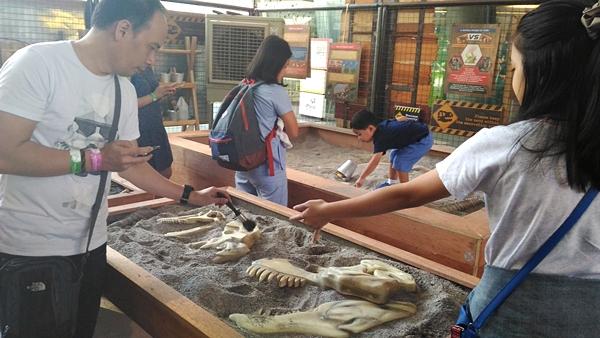 Dino Dig - Dino Play